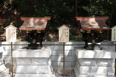 熊野神社(横浜市港北区師岡町)21