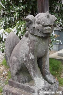 杉山神社(横浜市港北区新羽町)25