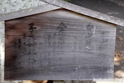 杉山神社(横浜市港北区新羽町)15