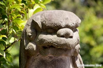 杉山神社(横浜市港北区新羽町)26