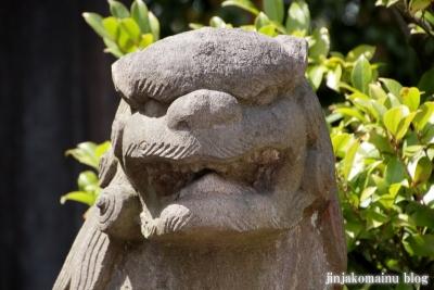 杉山神社(横浜市港北区新羽町)27
