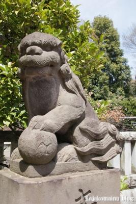 杉山神社(横浜市港北区新羽町)18