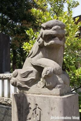 杉山神社(横浜市港北区新羽町)22