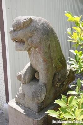 杉山神社(横浜市港北区新羽町)23