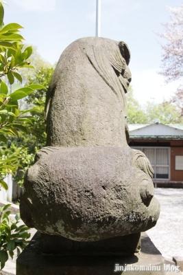 杉山神社(横浜市港北区新羽町)24