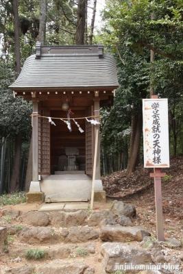 杉山神社(横浜市港北区新吉田町)13