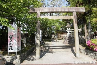 津島神社(津島市神明町)32