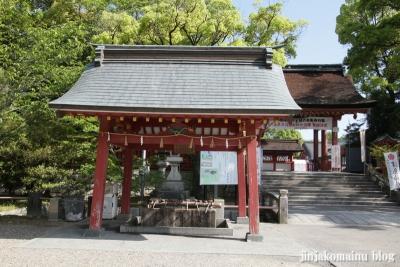 津島神社(津島市神明町)38