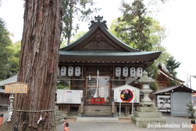 賀茂神社(江八幡市加茂町)10