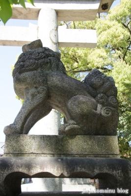 長浜八幡宮(長浜市宮前町)11