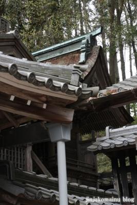八王子神社(瑞浪市陶町大川)22