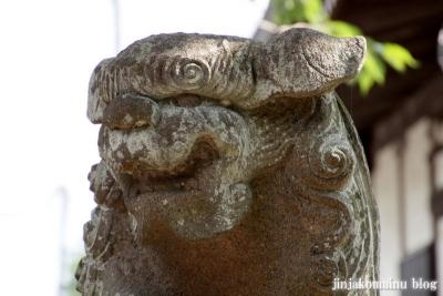 新明神社(横浜市神奈川区羽沢町)20