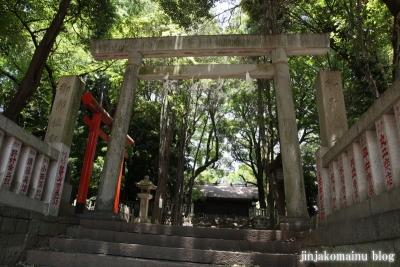 洲崎神社(横浜市神奈川区青木町)5