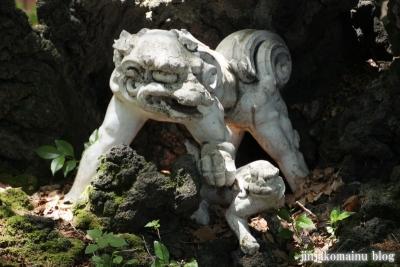 洲崎神社(横浜市神奈川区青木町)10