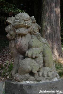 菅生神社(川崎市宮前区菅生)21
