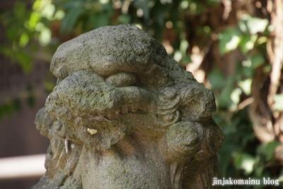 菅生神社(川崎市宮前区菅生)30