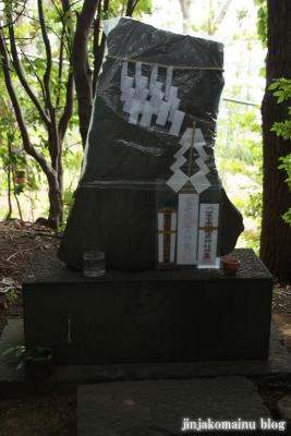 馬絹神社(川崎市宮前区馬絹)22