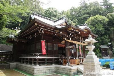 馬絹神社(川崎市宮前区馬絹)12