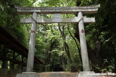 山田神社(横浜市都筑区南山田町)14