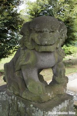 香取神社(久喜市外野)15