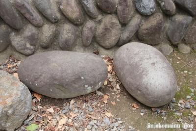 諏訪神社(久喜市下清久)10
