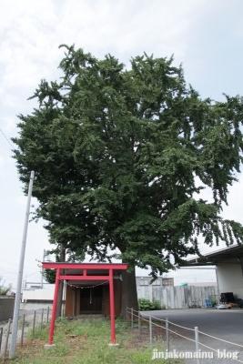 赤旗神社(久喜市下清久)1