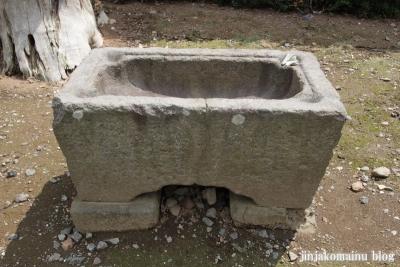 住吉神社(久喜市六万部)3
