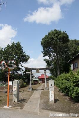 久伊豆神社(久喜市北中曽根)1