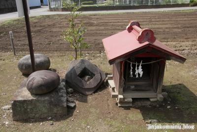 久伊豆神社(久喜市北中曽根)5