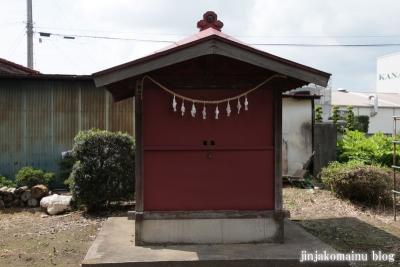 久伊豆神社(久喜市北中曽根)11