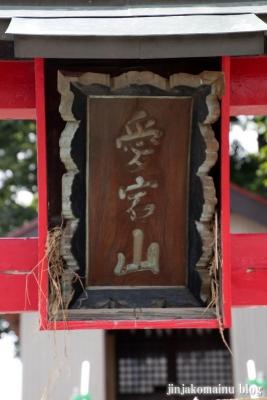 愛宕神社(久喜市北中曽根)3
