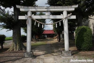 久伊豆神社(加須市割目)3