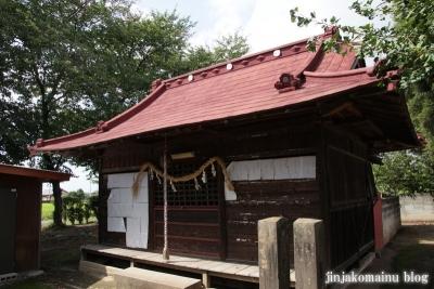 久伊豆神社(加須市割目)6