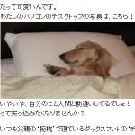 あさイチブログ