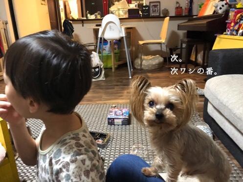 fc2blog_20181112203830f89.jpg