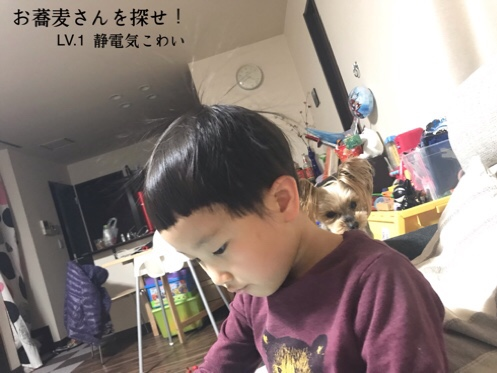fc2blog_20190118204225d94.jpg