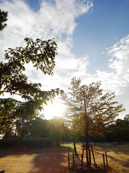 9.24 雁宿公園