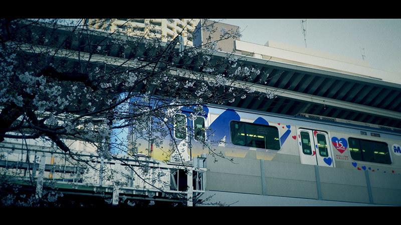 目黒川桜まつり_14_s