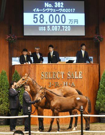 【競馬セレクトセール】近藤利一「前日から友道調教師にこの馬(5億8000万)だけは諦めないでほしいと言われていた」