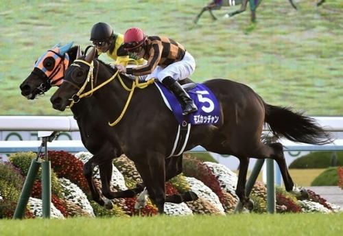 【エリザベス女王杯】和田「モズカッチャンがG1馬になれて良かった」