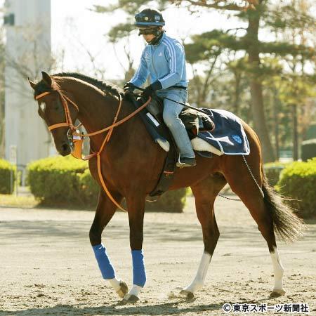 【東スポ杯2歳S】ムーア「ルーカスは将来的にはいい馬になる」