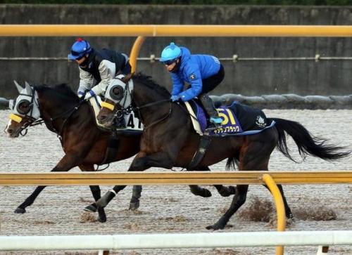 【競馬】NHKが12月30日にキタサンブラックの特番を放送決定wwwwwww