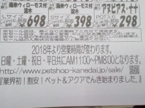PAP_0065_2017112615343996e.jpg