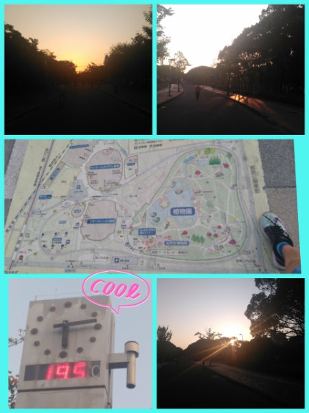 17-09-26-09-02-46-811_deco_20170926190246.jpg