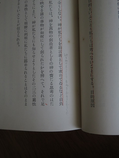 wa08.jpg