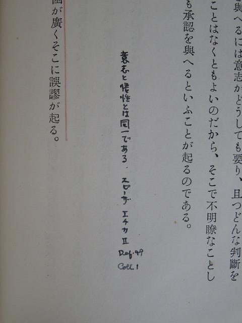 wa10.jpg