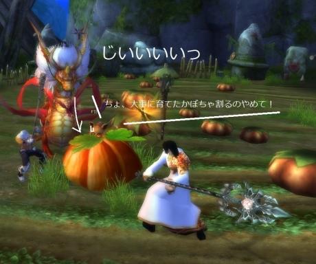 かぼちゃを狙う