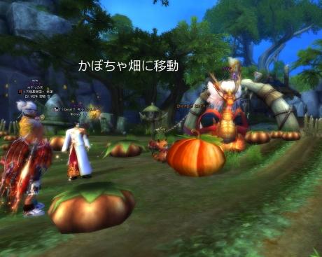 かぼちゃ畑に移動