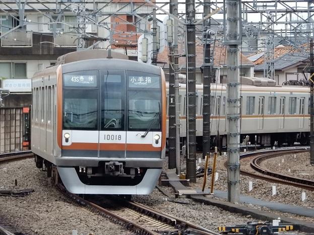 DSCN3204.jpg