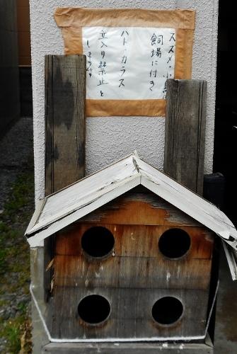 スズメ・小鳥の飼場に付き ハト・カラス立入り禁止とします